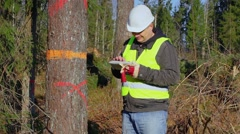 Stock Video Footage of Glad forest engineer with tablet PC near the tree