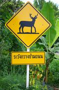 traffic sign, caution deer crossing - stock photo