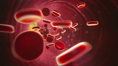 Cholesterol, erythrocyte Stock Footage