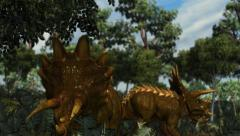 Triceratops in a prehistoric scene - dolly shot - depth of Field - DOF Stock Footage