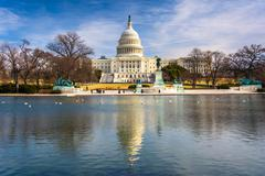 Stock Photo of the united states capitol and reflecting pool in washington, dc.
