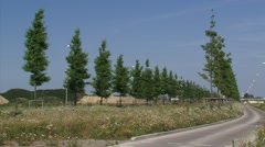 Avenue of trees through development site for a new business park or neighborhood Stock Footage