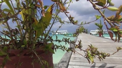 Dolly view to show the pier in a seaside resort Stock Footage