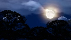 Clouds Moon and trees Stock Footage