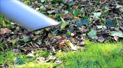 Autumn leaves dispose with foliage collector Stock Footage