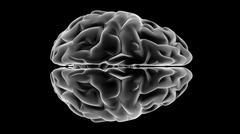 xray brain - stock illustration