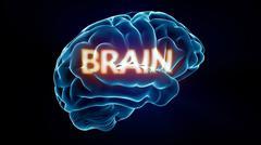 brain xray brain - stock illustration