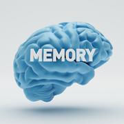 memory brain - stock illustration