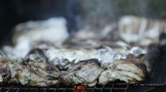 Chicken and fish barbecue Stock Footage