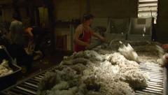 Shedhands Throwing and Skirting a Wool Fleece Stock Footage