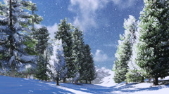 Winter pine forest in the snowy mountains Stock Footage