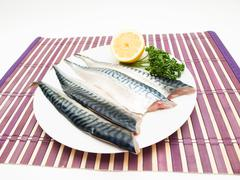 Raw mackerel filet - stock photo