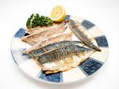 Stock Photo of Raw mackerel filet