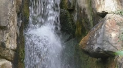 Slow Motion close-up of brown bear (Ursus) passing in front of small waterfall Stock Footage