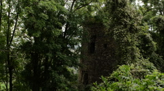 abandoned medieval fortress invaded by forest vegetation - stock footage