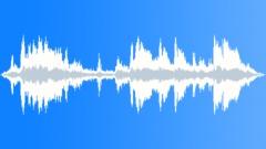 Sport Cars Revvings 01 Sound Effect