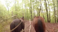 POV - old horse carriage rides through the mountains - stock footage