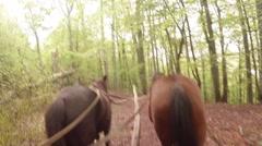 POV - old horse carriage rides through the mountains Stock Footage