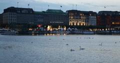 Night Lights Hamburg Skyline Geese Swans Swim Alster Lake Sightseeing Landmarks Stock Footage