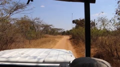 Riding in a Safari Vehicle Stock Footage