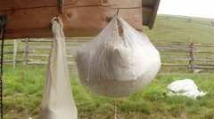Large piece of cheese hanging in cheesecloth for dehydration mountain tradition Stock Footage