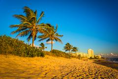 palm trees and condominiums on the beach of jupiter island, florida. - stock photo