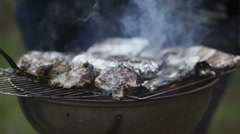 Meat and fish barbecue Stock Footage
