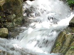 Stream and water. Related clips are in my portfolio in 1920x1080. Stock Footage