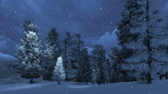 Snowbound pinewood and snowfall at night Stock Footage