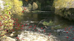 Small river. Stock Footage