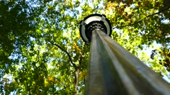 Upward view of lamp post and Autumn leaves in 4K Stock Footage