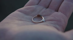 Wedding rings on the palm of the groom, marriage proposal from Coccinellidae on Stock Footage