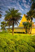 the edgewater inn and palm trees in st. augustine beach, florida. - stock photo