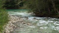 Goodell Creek Merging into the Skagit River, 4K Stock Footage
