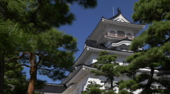 Pine Trees at Toyama Castle in Japan Stock Footage