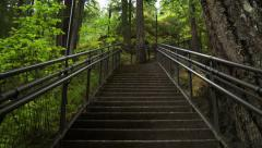 Looking Up Staircase In Forest, 4K Stock Footage