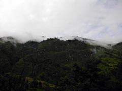 Forest on Himalayan mountain shrouded in monsoon clouds - stock photo