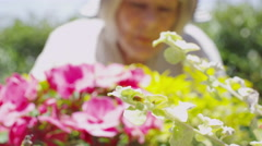 Senior lady doing some gardening at home Stock Footage