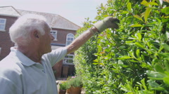 Caring wife brings her husband a drink while he's gardening Stock Footage