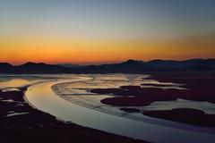 Sunset of reeds field in suncheon bay in korea Stock Photos