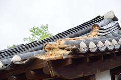 Detail of damaged korean traditional tiled roof Stock Photos