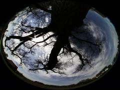 360X185 Degrees Fisheye - clouds Timelaps (Allsky / Fulldome / Texture) Stock Footage