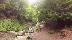 Stony Brook in most mountain summer green forest Stock Footage
