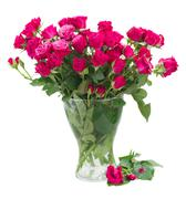 Bunch of  fresh mauve roses Stock Photos