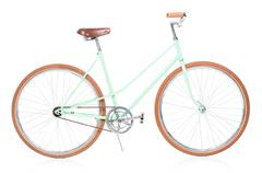 Stylish green female bike with brown wheels on white Stock Photos