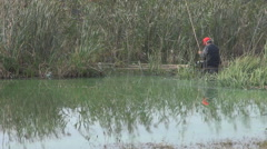Old way of fishing elderly fisherman into lake water setting bait for fish catch Stock Footage