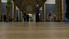 Hall of Honor, Rijksmuseum Amsterdam Stock Footage