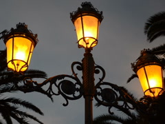Lamps against palm trees. Related clips are in my portfolio in 1920x1080. Stock Footage