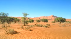Drive through Namib Desert and the largest sand dunes in the world! - stock footage