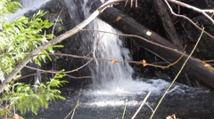 Natures beauty, a waterfall in the woods Stock Footage